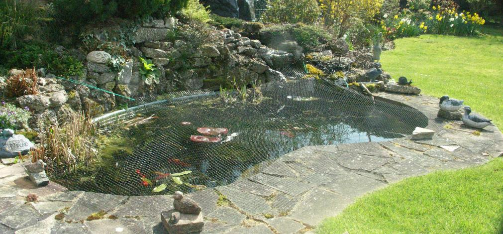 Federation of british aquatic societies for Garden pond cleaning nets
